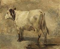 die weiße kuh by hermann baisch