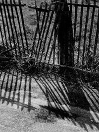 der zaun by raymond bachelard