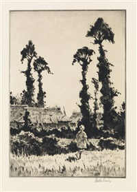 trees at gotemba by martin lewis