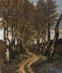 birch trees along a lane by carel nicolaas storm van 's-gravensande