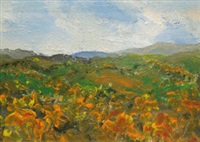 spring landscape slieve croobe by harry reid