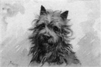 a terrier by frances c. fairman
