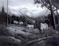 untitled - herd of elk by barbara fisher