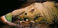 craneo 5. cueva mayor. (serie origen) by bleda y rosa