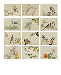 birds and flowers (album w/12 works) by fan jinyong