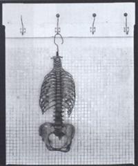 skelett by tomas rasl