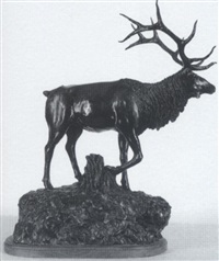 wapiti by willard morin