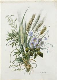 bouquet de blé, d'escourgeon et de fleurs bleues by emilie-anna reinhart