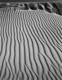 sand dunes, oceano, california by ansel adams