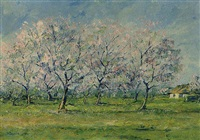 spring landscape with blossom trees by peter van den braken