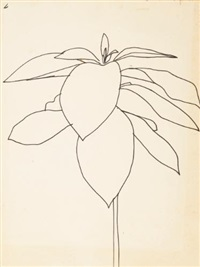 milkweed by ellsworth kelly
