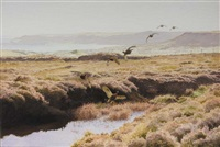 the grouse on gruig by roy gaston