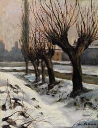 gelsi d'inverno by maria vanella bosca