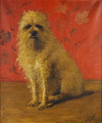 portrait of a brussels griffon by bertha lemmens