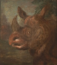 rhinoceros by william huggins