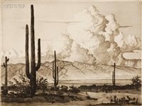 arizona by gerry peirce