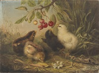 chicks and a branch of cherries by ben austrian