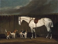 grey hunter with hounds by british school (19)