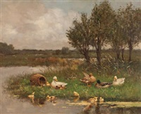ducklings at play by david adolf constant artz