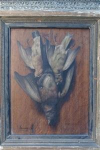 trophées de chasse aux oiseaux by arsène symphorien sauvage
