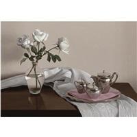 silver set by renato meziat