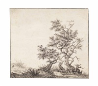 a dune landscape with gnarled trees by claes van beresteyn