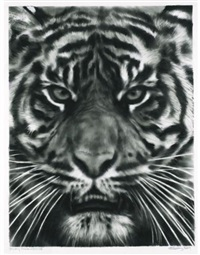 study for tiger head 3b by robert longo