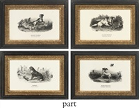 twelve studies of sporting dogs by hubertus reichert