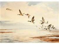 canada geese in flight by john cyril harrison