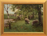 sheep under the trees by willem steelink