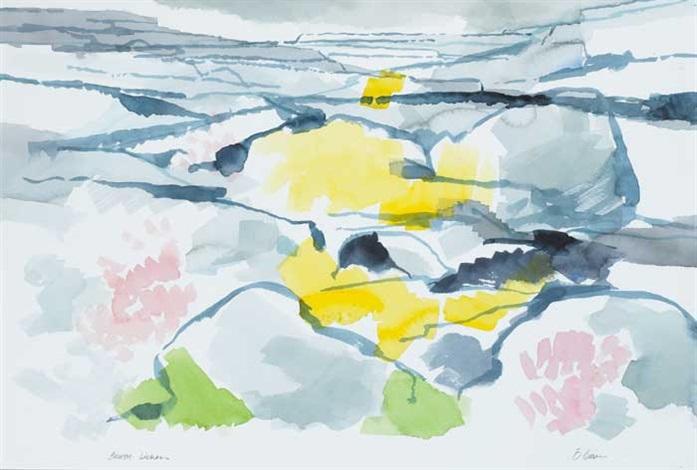 burren lichen by liam ó broin