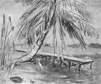 afternoon siesta, banana river by anne wilson goldthwaite