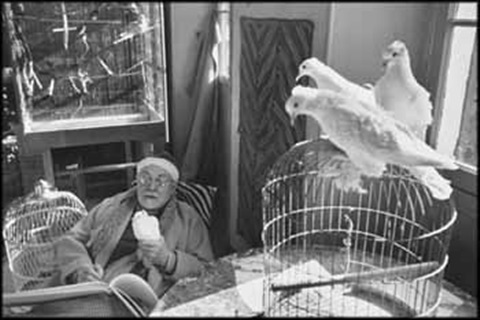 henri matisse by henri cartier bresson