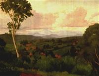 paysage verdoyant en afrique by christian couillaud