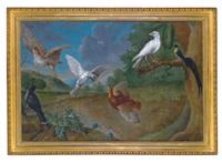 eine weite landschaft mit einer waldschnepfe, einem rebhuhn, einem paradiesvogel und anderen vögeln by carl josef adolph