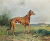 a prize greyhound in a landscape by philip eustace stretton