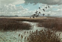 pintails over the marsh by keith shackleton