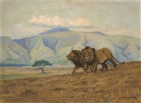 lions in the ngora ngora crater by arthur radclyffe dugmore