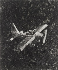 night fly (from pictures of soil) by vik muniz