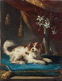 bildnis eines hundes by francesco fieravino (il maltese)