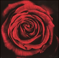 untitled (rose) by robert longo