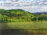 ball's stripe ranch by j. stanford perrott