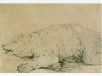 study of a dead bear, yellowstone river (+ horse, verso) by charles wimar