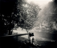 the alligator's approach by sally mann