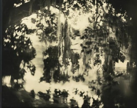 untitled deep south 32 by sally mann