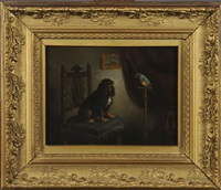 cavalier king charles et son perroquet by leopold de cauwer