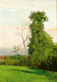verde pianoro by lorenzo delleani