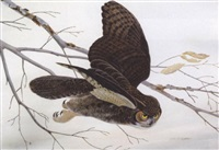a great horned owl by john aldrich ruthven