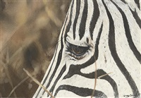 white and black stripes by lindsey selley