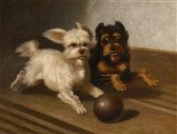 deux chiens à la boule by bernard de gempt